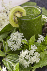 Glass of green smoothie decorated with kiwi slice, leaves and blossoms - AKF000405
