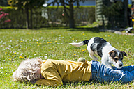 Boy playing with Jack Russel Terrier puppy in garden - MJF001311