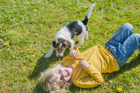 Boy playing with Jack Russel Terrier puppy in garden - MJF001319