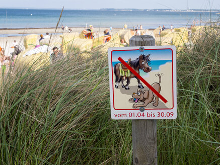 Germany, Schleswig-Holstein, Scharbeutz, no dogs and horses sign at beach - AMF002504