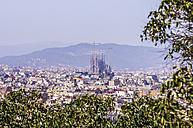 Spain, Barcelona, cityscape from Palau Nacional on Sagrada Familia - THAF000570