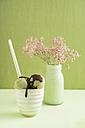 Green tea icecream  with chocolate sauce and Gypsophila flower - ECF000683