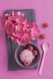 Raspberry icecream with poppy seed and flower - ECF000697
