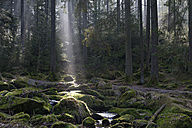 Germany, Bavaria, Lower Bavaria, Bavarian Forest, Waldkirchen, Saussbach gorge and sun beam - LB000780