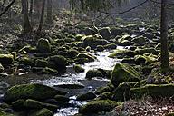 Germany, Bavaria, Lower Bavaria, Bavarian Forest, Waldkirchen, Saussbach gorge - LB000782