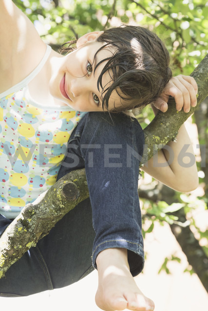 Portrait of smiling little girl climbing on tree - LVF001586