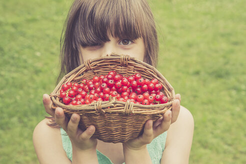 Little girl holding basket of red currants - LVF001619