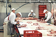 Processing of pig carcasses in a slaughterhouse - LYF000201