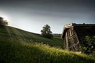 Austria, Tyrol, Matrei, Hay barn - MKFF000014