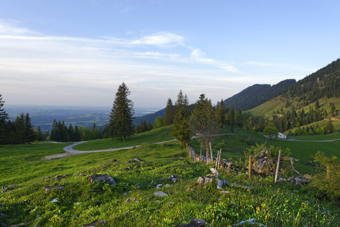 Germany, Bavaria, Upper Bavaria, Chiemgau Alps, Samerberg, Hochries area near Grainbach - LB000824