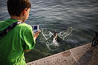 Italy, Veneto, Garda, Lake Garda, boy taking photos of a duck - SBDF001047
