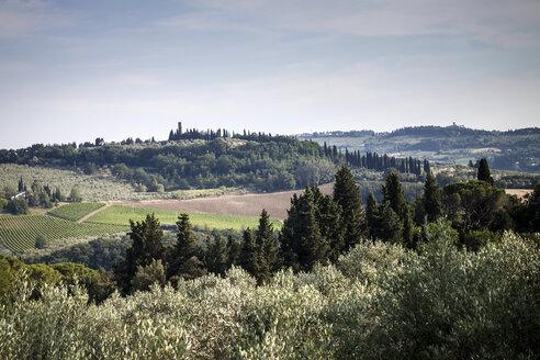 Italy, Tuscany, rolling landscape - SBDF001078
