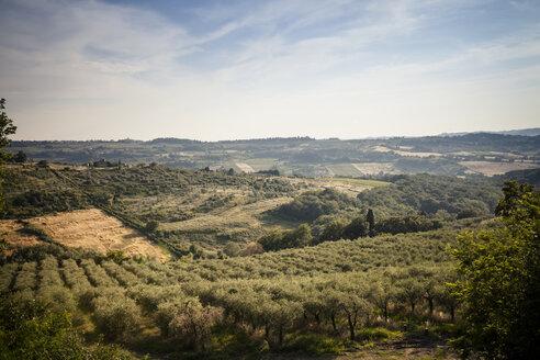 Italy, Tuscany, San Casciano in Val di Pesa, rolling landscape - SBDF001079