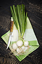 Bunch of spring onions and knife - MAEF008844