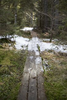 Germany, Bavaria, wooden boardwalk with leftovers of ice - STB000193
