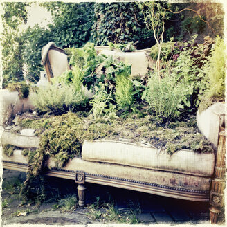 Overgrown couch in a garden, Alsace, France - SEF000760