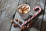 Sugar cane, sugar roasted almonds, chocolate almond slivers and a mug of cocoa with cream on grey wood - CSF021989