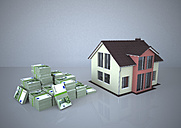 Illustration, House and money - ALF000170
