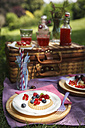 Picnic in park with berry pies and fresh drinks - EVGF000776