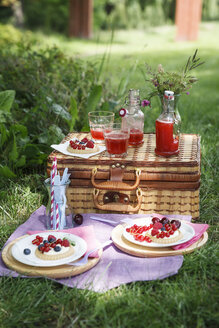 Picnic in park with berry pies and fresh drinks - EVGF000777