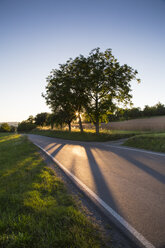 Empty country lane at evening twilight - LVF001735