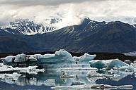 Iceland, Jokurlsarlon, glacier lake - FCF000290