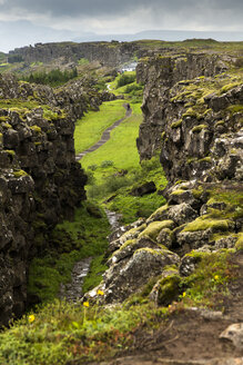 Iceland, view to Pingvellir canyon - FCF000356