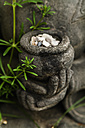 Close-up of a statue and plants - TCF004184