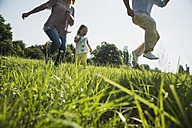 Parents and little daughter having fun on a meadow - UUF001531