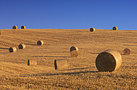 Italy, Tuscany, stubble field with hay bales in front of blue sky - RUEF001260