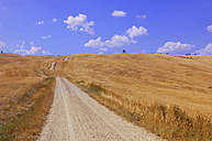 Italy, Tuscany, Val d'Orcia, view to empty dirt track through field - RUEF001263