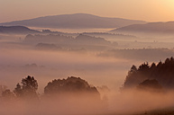 Germany, Saxony, Saxon Switzerland, morning mood with mist at sunrise - RUEF001270
