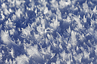Ice crystals at the surface of snow, close-up - RUEF001274