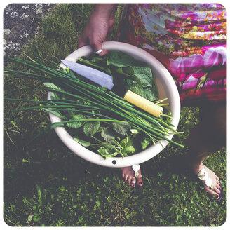 Woman carrying bucket in garden - SHI000042
