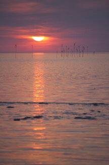 Germany, Lower Saxony, Dorum, Sunset at the wadden sea - OLE000027