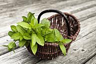 Wickerbasket of fresh peppermint - FCF000403