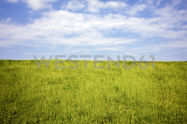 Germany, View of sky over field - KRPF000932