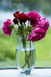 Roses in vase - NGF000149