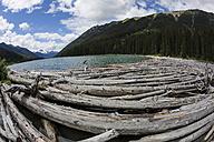 Canada, British Columbia, Summer at Seton Lake - FFF001424