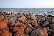 Australia, South Australia, Port Elliot, rocky coast - MIZ000558