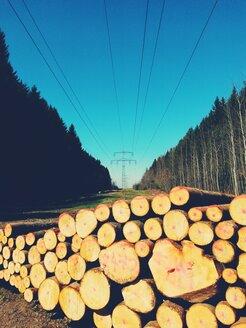 Logs at power pylon, Aying, Bavaria, Germany - BRF000610