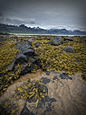 Iceland, Beach with seagrass at low tide - MKFF000084