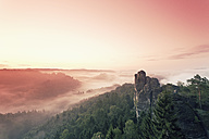 Germany, Saxony, morning mist at Elbe Sandstone Mountains - MSF004108