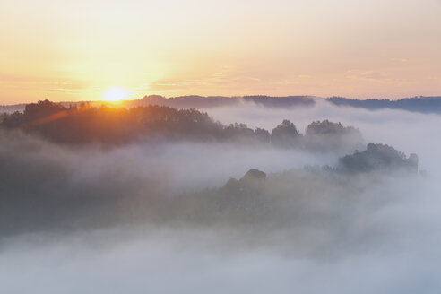Germany, Saxony, morning mist at Elbe Sandstone Mountains - MSF004113