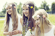 Portrait of three girls wearing floral wreaths - GDF000374