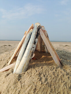 Cute seashell hut made by children at the beach Norderney, Germany - JAWF000031