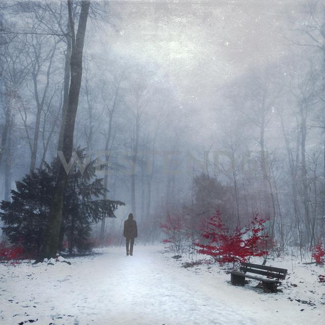 Man walking in snow covered forest, digital alteration - DWI000166 - Dirk Wüstenhagen/Westend61