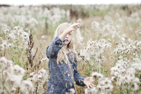 Girl standing in a field playing with seeds - MAE009019