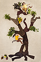 Children playing monkeys in tree - BAEF000816