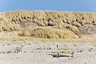 Germany, Schleswig-Holstein, Sylt, bench on dune - SRF000782